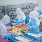 飲食料品の製造・加工